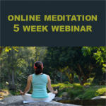 Qigong Meditation Webinar 5 Week