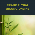 Crane Flying Qigong Online
